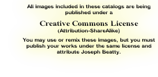All images included in these catalogs are being